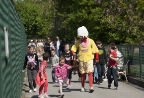 Uskrsni ponedjeljak u Zoološkom vrtu