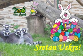 Aktivnosti u Zoološkom vrtu